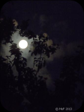 Augustimåne