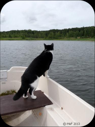 Mia på sjön!