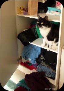Mia i garderoben