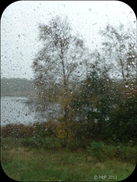 Regn 4
