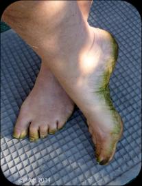 Gröna fötter