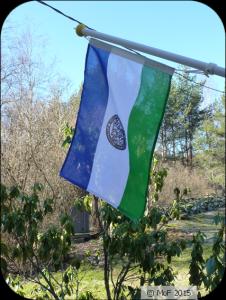 Jämtlands flagga