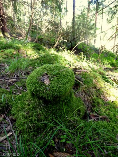 Mosspall