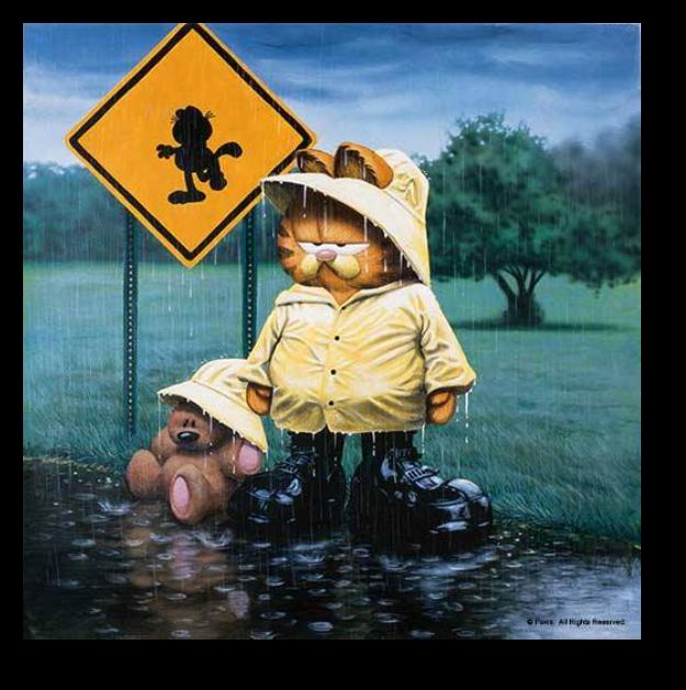 Regnigt