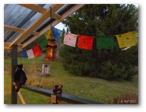 Böneflaggor